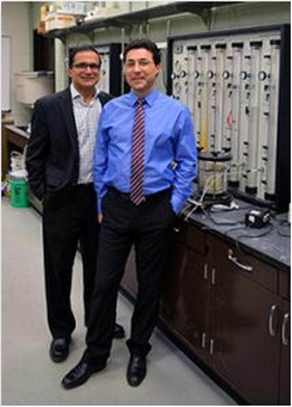 Professor Krishna Reddy and Dr. Claudio Cameselle