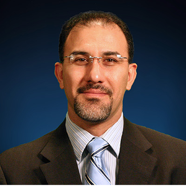 Professor Mohammadian