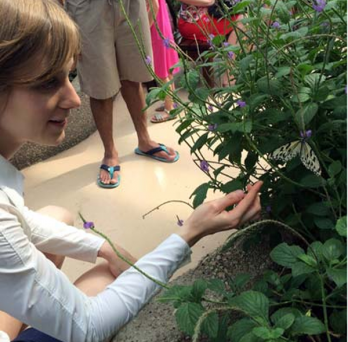 Student observing butterfly and flowers