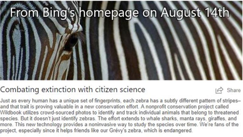 Professor Tanya Berger's project on Bing