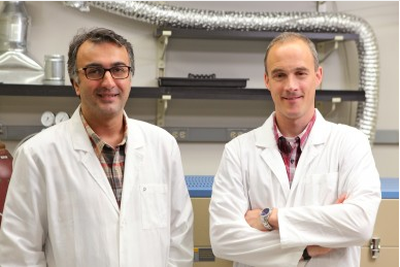 Professors Salehi and Klie