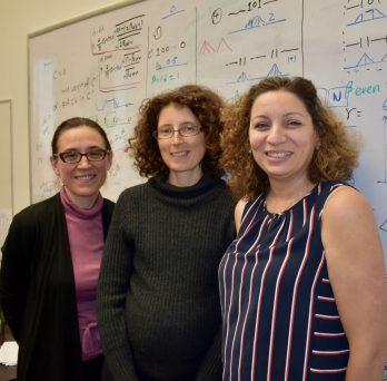 Co-Principal Investigators Daniela Tuninetti, Natasha Devroye, and Besma Smida